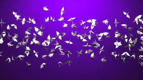 Origami Crane On Purple Background Animation