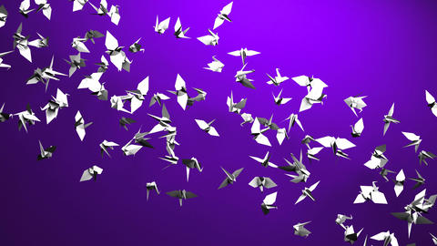 Origami Crane On Purple Background CG動画素材