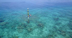 v06440 Aerial flying drone view of Maldives white sandy beach young people snork Footage