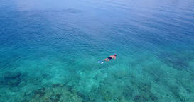 v06442 Aerial flying drone view of Maldives white sandy beach young people snork Footage