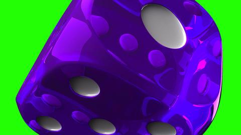 Purple Dice On Green Chroma Key Stock Video Footage