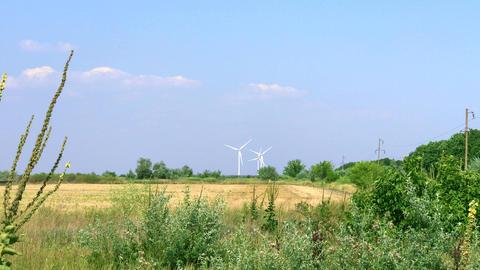 Three windmills in the distance ビデオ