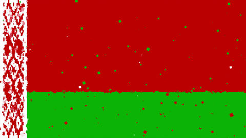 celebratory animated background of flag of Belarus appear from fireworks Animation