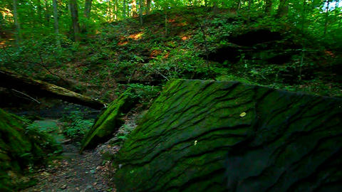 Shades State Park Pearl Canyon stock footage