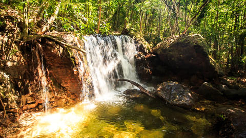 Small Waterfall Falls into Transparent Pond in Tropical Forest Footage