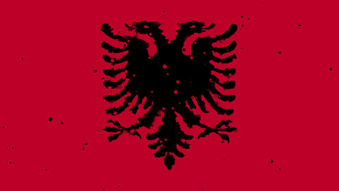 celebratory animated background of flag of Albania appear from fireworks Animation
