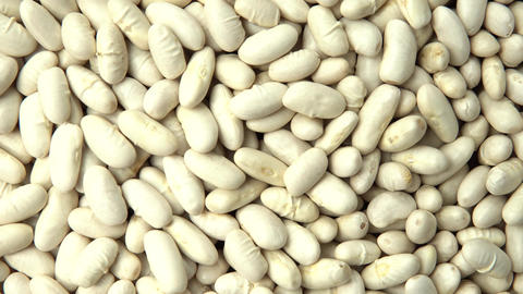 White beans. Vertical and smooth movement of the motorized slide, on the White b Footage