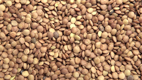 Lentils. Horizontal and smooth movement of the motorized slider, on the Lentils Footage