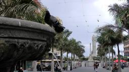 Spain The Canary Islands Tenerife Santa Cruz palm avenue and fountain Filmmaterial