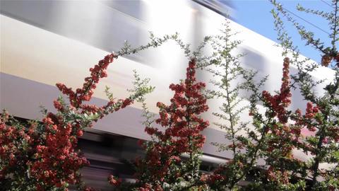 Train / Transport 2