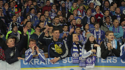 Football fans shout slogans during a football match. People, crowd, football fan Footage