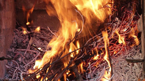 Dry branches of trees burning, high heat with red flames. Fire is seen almost. F Footage