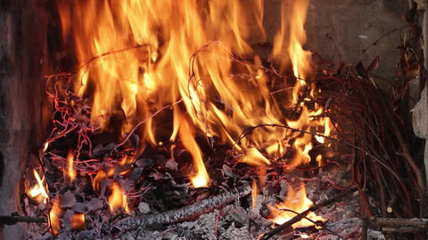 Dry twigs burning, fire burning. Coals of wood burned. Large flames and high, br Live Action