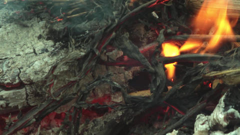Smoke dry twigs burning fire burning Coals of wood burned 28 Footage