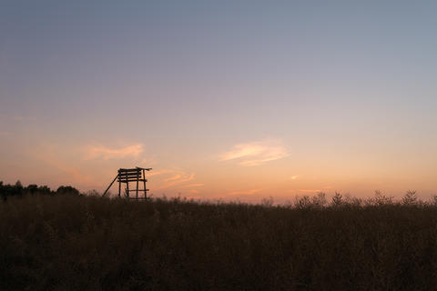 Wooden watchtower located in a field during sunset フォト