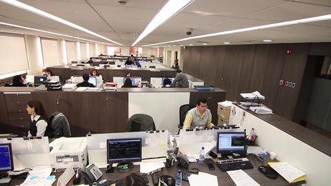 Office workers in cubicles Footage