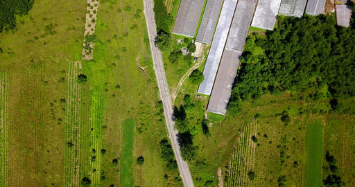 Aerial Drone View Of Agricultural Vegetables Fields Plantation And Greenhouses 画像