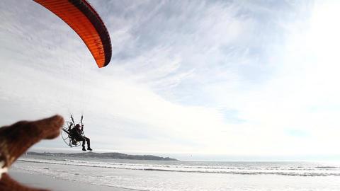 Paraglider beach landing Footage