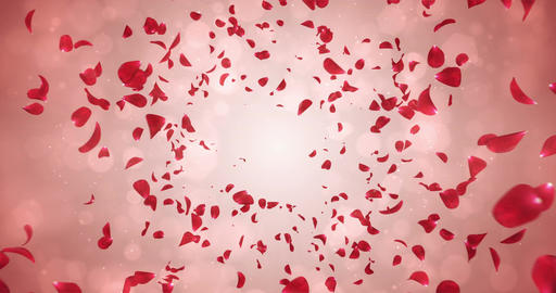 Flying Romantic Red Rose Flower Petals Falling Background Loop 4k Animation
