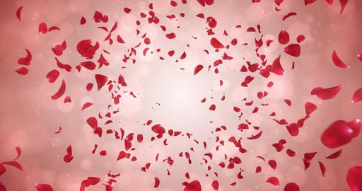 Flying Romantic Red Rose Flower Petals Falling Background Loop 4k Animation