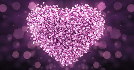 Pink Rose Sakura Flower Petals In Lovely Heart Shape Background Loop 4k Animation