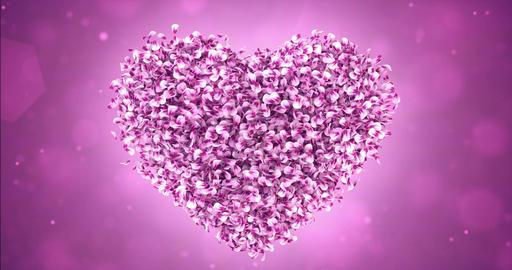 Rotating Pink Rose Sakura Flower Petals In Lovely Heart Shape Background Loop 4k Animation