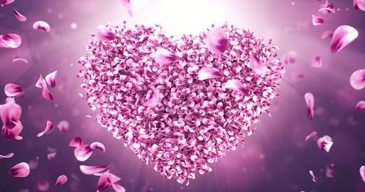 Rotating pink rose sakura flower petals in love heart shape. Seamless loop 4k Animation