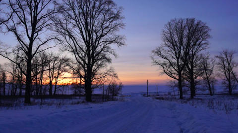 Winter Road, trees, sunset Footage