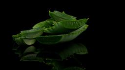 Sliced aloe leaf Footage