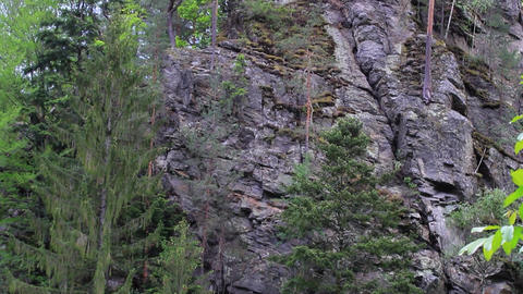 Forest trees. The discovery of the ruins. Rocky mountains covered with vegetatio Footage