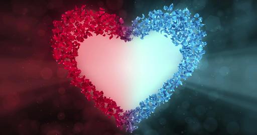 Red Blue Rose Flower Petals In Heart Shape Alpha Matte Loop Placeholder 4k Animation