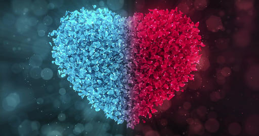 Red Blue Rose Flower Petals In Lovely Heart Shape Background Loop 4k Animation