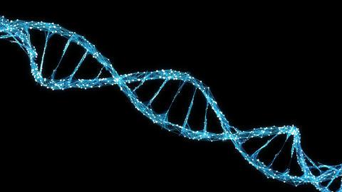 Abstract Motion Background - Digital Plexus DNA molecule 4k Loop Alpha Matte Image