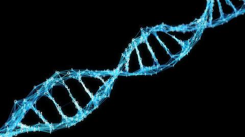 Motion Background Digital Binary Plexus DNA molecule Alpha Matte 4k Loop Animation