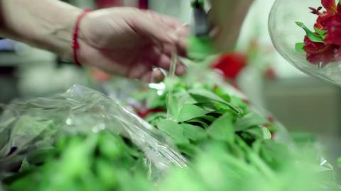 Cutting garden stems Stock Video Footage