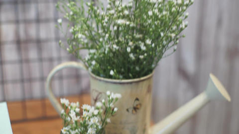 Handheld Camera: Bouquet of White Ester Flowers in Vase Watering Can Footage