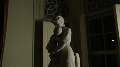 Sculpture at night Footage