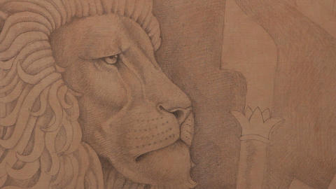 Lion head drawing Footage