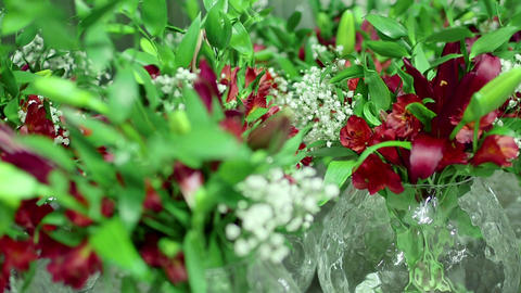Vases with red flowers Footage