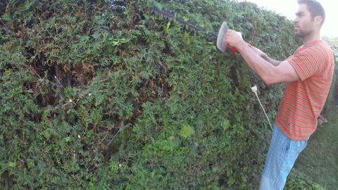 Outdoor gardening work Footage