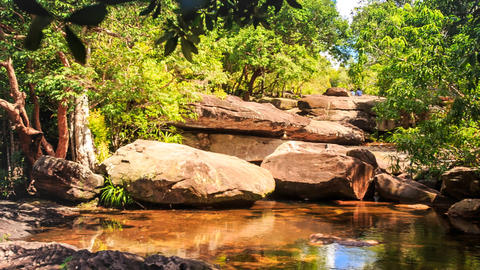 Surrounded by Stones Pond in Forest Reflects Rocks Plants Sky Footage