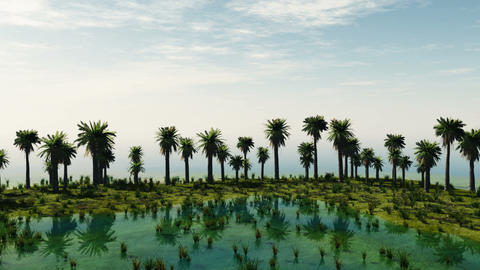 Palm trees at laguna island. sunny day Animation