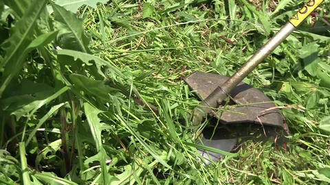 Gardener with a motor scythes, garden mowing. Tall grass grew along the fence.Br Footage