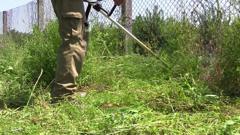 Grass is tall and more, the beginning of spring in the garden. Gardener with a m Footage