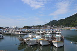 Tomonoura Harbor Japan Photo