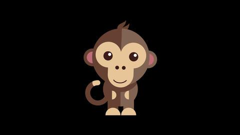 Animated Monkey Icon Videos animados