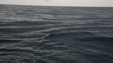 Raging sea I Footage