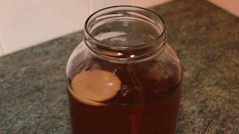 Kombucha preparation- zoom of the tea mushroom in a jar with a tea decoction Footage