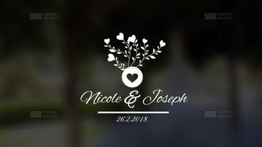 Wedding Titles V5 After Effects Template