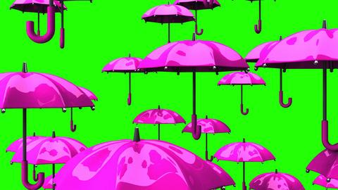Rising Pink Umbrellas On Green Chroma Key Animation